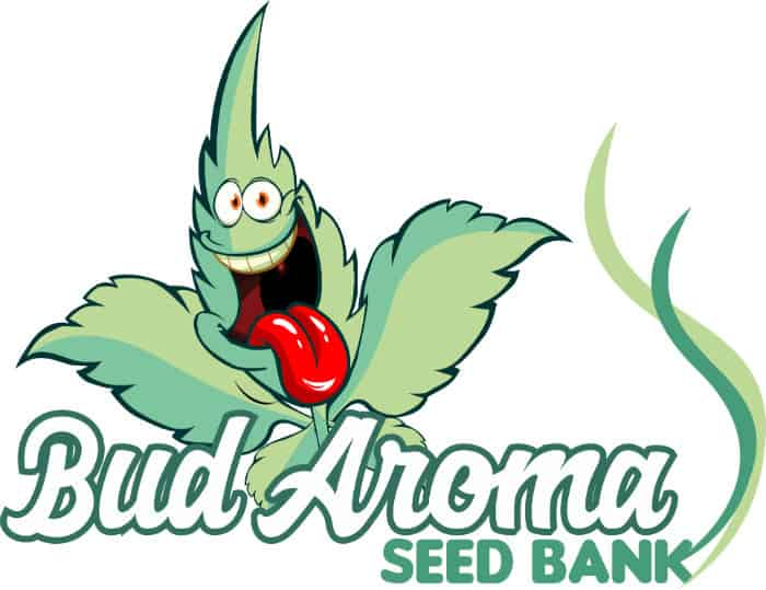Best USA Seed Banks