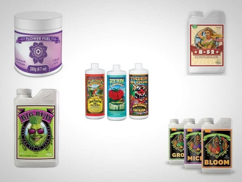 best hydroponics nutrients
